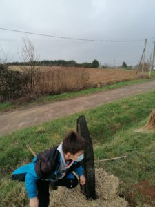 Plantations d'arbres fruitiers (Enfants)